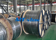 316L / 1.4404 Welded Coiled Seamless Stainless Steel Pipe For Multi - Core Tube आपूर्तिकर्ता